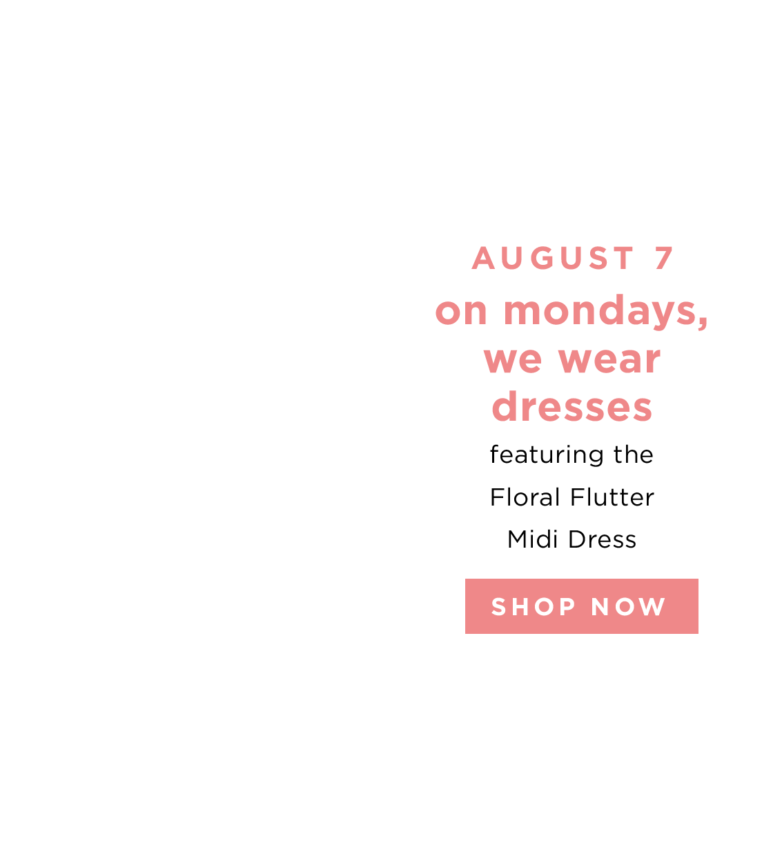 AUGUST 7 - SHOP NOW